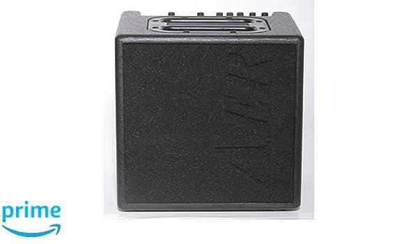 Aer Alpa amplificador profesional para guitarra electroacústica: Amazon.es: Instrumentos musicales