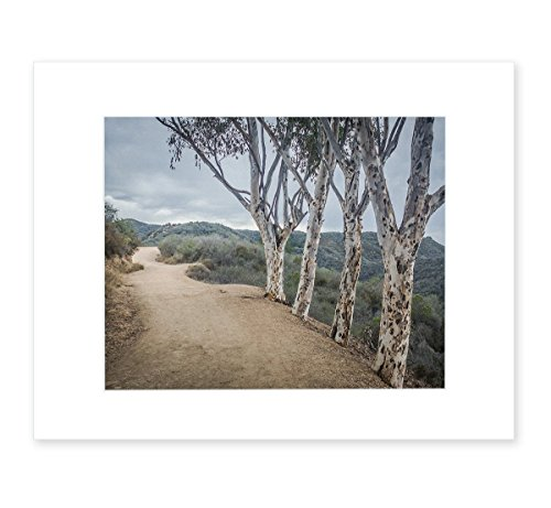 Santa Monica Mountains Landscape Wall Art, Southern California Scenery, 8x10 Matted Photographic Print (fits 11x14 frame), 'A Storm At Will (Art Rogers Photography)