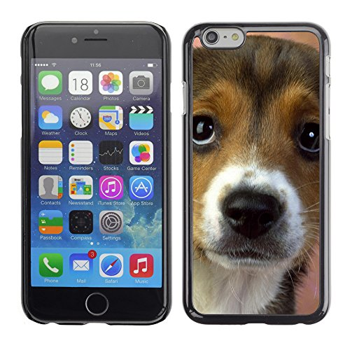 Premio Sottile Slim Cassa Custodia Case Cover Shell // V00003740 yeux de chiot beagle // Apple iPhone 6 6S 6G PLUS 5.5""
