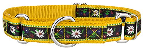 Country Brook Design Edelweiss Designer Ribbon Martingale Dog Collar-L
