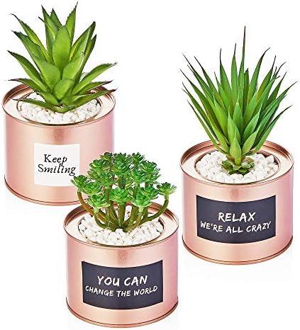 Artificial Succulent Plants for Women Desk – Fake Succulent Plant Set – Office Decor Faux Succulents in Rose Gold Pots – Mini Succulent Decor for Bedroom Bathroom Bookshelf Dorm Accessories 3-Pack 51gKve2GSyL