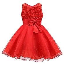 3D Roses Flower Dress with Bow for Little girls