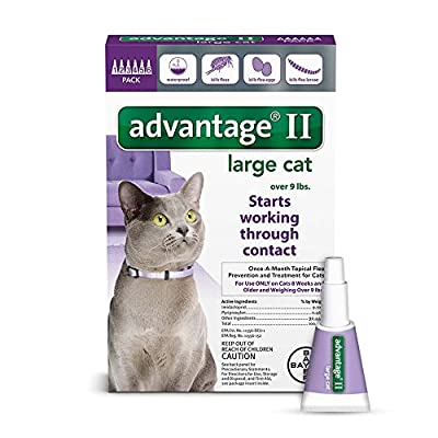 Advantage II Flea prevention for Small Cats