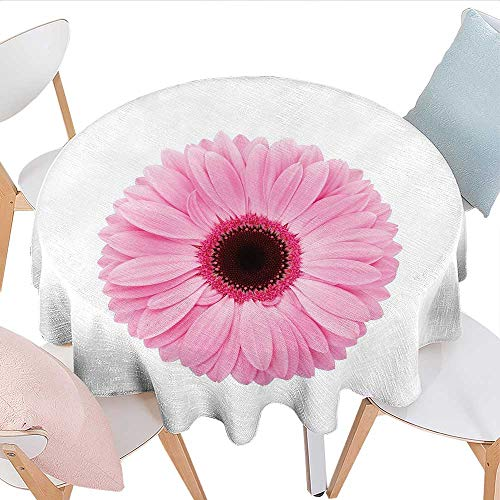 Tara Single Light - Home-textile-print Pink and White Washable Tablecloth Fresh Gerber Daisy Garden Plants of Spring Growth Single Flower Image Table Cover for Kitchen D36 Pale Pink White