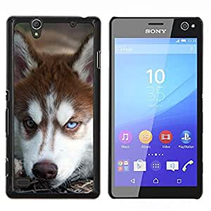 TECHCASE---Cubierta de la caja de protección para la piel dura ** Sony Xperia C4 ** --Malamute de Alaska perro del husky siberiano