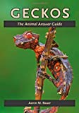 img - for Geckos: The Animal Answer Guide (The Animal Answer Guides: Q&A for the Curious Naturalist) book / textbook / text book