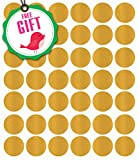 Gold Polka Dot Wall Decals - Girls Appliques Circle Décor Stickers [207 Art Bedroom clings] with Free Bird Gift!