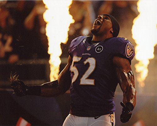 Baltimore Ravens Nfl 8x10 Photo - RAY LEWIS BALTIMORE RAVENS 8X10 SPORTS ACTION PHOTO (XL-1)