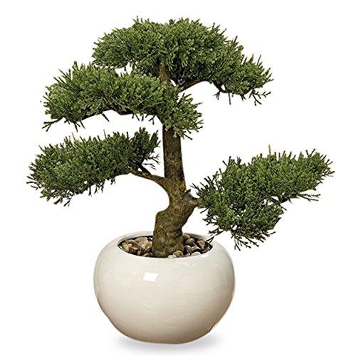 countertop topiary - 5
