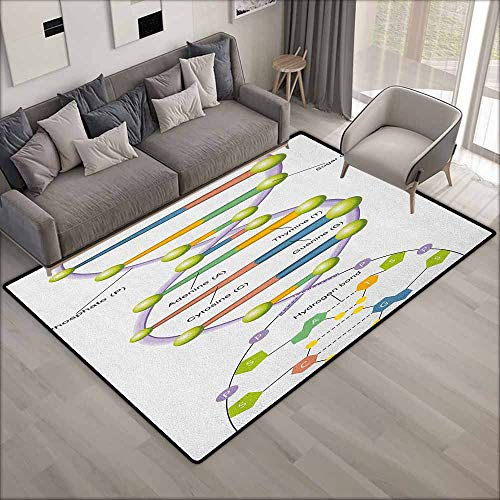 Kids Rug,Educational Colorful Structure of DNA Genetic Code Amino Acids Nucleotides Scientific Study,Children Crawling Bedroom Rug,5