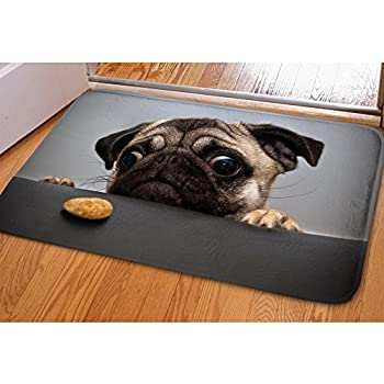 HUGS IDEA Cute Pug Welcome Mats Entrance Floor Funny Indoor Outdoor Doormat Non Slip Backing Washable