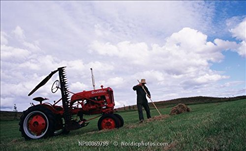 A farmer raking hay. 1952 Farmall Cub tractor. Iceland, northwest, Skagafjordur. 30x40 photo reprint by PickYourImage