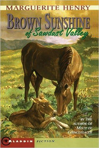 Brown Sunshine of Sawdust Valley