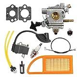Notos Carburetor + Air Filter + 4282 400 1305