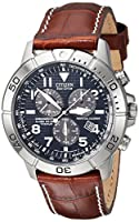 Citizen Men's BL5250-02L Titanium Eco-Drive Watch with Leather Band