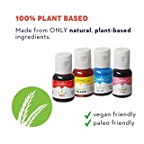 All Natural Plant Based Food Coloring, Edible Organic Vegan Friendly Dye for Baking, Icing, Cooking, Fondant, Bath Bomb Molds, and DIY Projects, Set of 4 in Blue, Yellow, Red, Pink Gel, by Chefmaster
