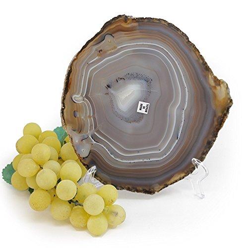 Genuine Agate (Genuine Brazilian Agate Slice. Includes Agate Authentication Card. NATURAL (5
