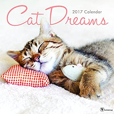 Cat Dreams 2017 Calendar