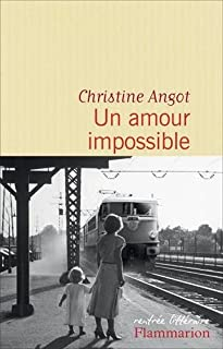 Un amour impossible, Angot, Christine