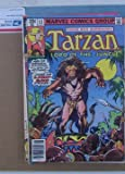Tarzan Lord Of The Jungle Comic Book From Marvel #13