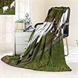 Luxury Double-sides Reversible Fleece Duplex printed blanket Two Little Baby Goats on a Bench Fighting with Their Horns Picture Image White and Green Travelling and Camping blanket /W79'' x H47''