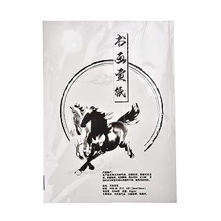 Carta tradizionale per calligrafia cinese/giapponese, bianco, 30 pagine, 36cm x 26cm, approx DIN A4, Art. PP-01 Z53108
