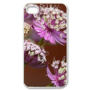 diy zhengBeautiful grassland Customized Cover Case with Hard Shell Protection for iphone 5c/, Case lxa#456446