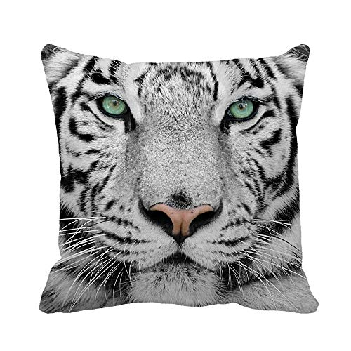 Awowee Throw Pillow Cover Animal White Tiger Wild Cat Color Portrait Closeup Head 18x18 Inches Pillowcase Home Decorative Square Pillow Case Cushion Cover