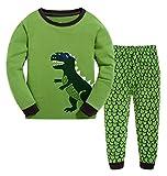 7 year old clothes - ANTSANG Kids Little Boys Girls Cute Dinosaur Pajamas Set Cotton Toddler Clothes Pjs Children Sleepwear (Cute Dinosaur (Green), 7 Years Old)