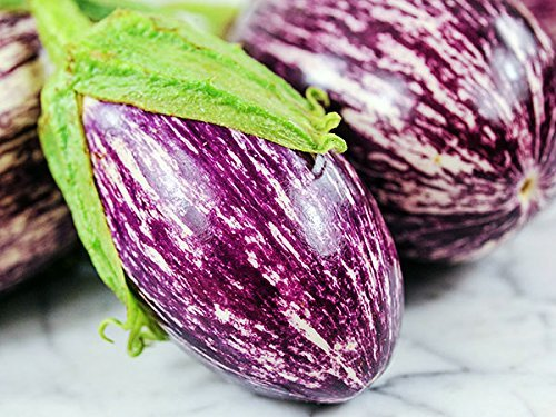20+ ORGANICALLY GROWN Shooting Stars Striped Eggplant Seeds, Heirloom NON-GMO, Meaty, Purple and White, Not Bitter and Super Delicious, From USA (Eggplant Stars)