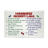 "CafePress - Havanese Property Laws 2 - Rectangle Magnet, 2""x3"" Refrigerator Magnet"