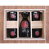 Ceramic Black Japanese Saki Set by Feng Shui Import