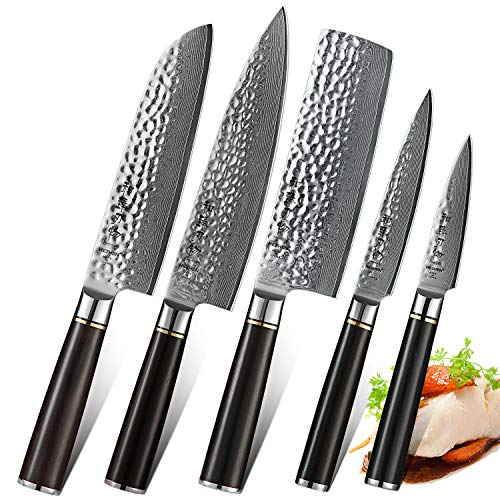 HEZHEN 5-Piece Damascus Kitchen Knife Set, Chef Knife Nakiri Santoku and Utility Knife Hammered Forging 67 Layer Japanese Damascus Steel Professional Chef's Kitchen Knife Ebony Handle – Classic Series