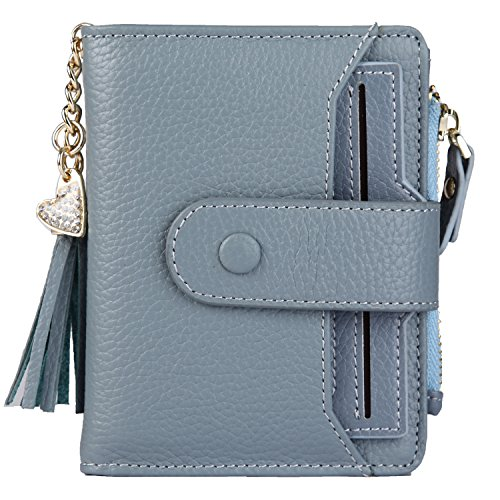 Print Chain Wallet - Women's Mini Soft Leather Wallet with ID Window Card Sleeve Bifold Wallet Coin Purse (blue)