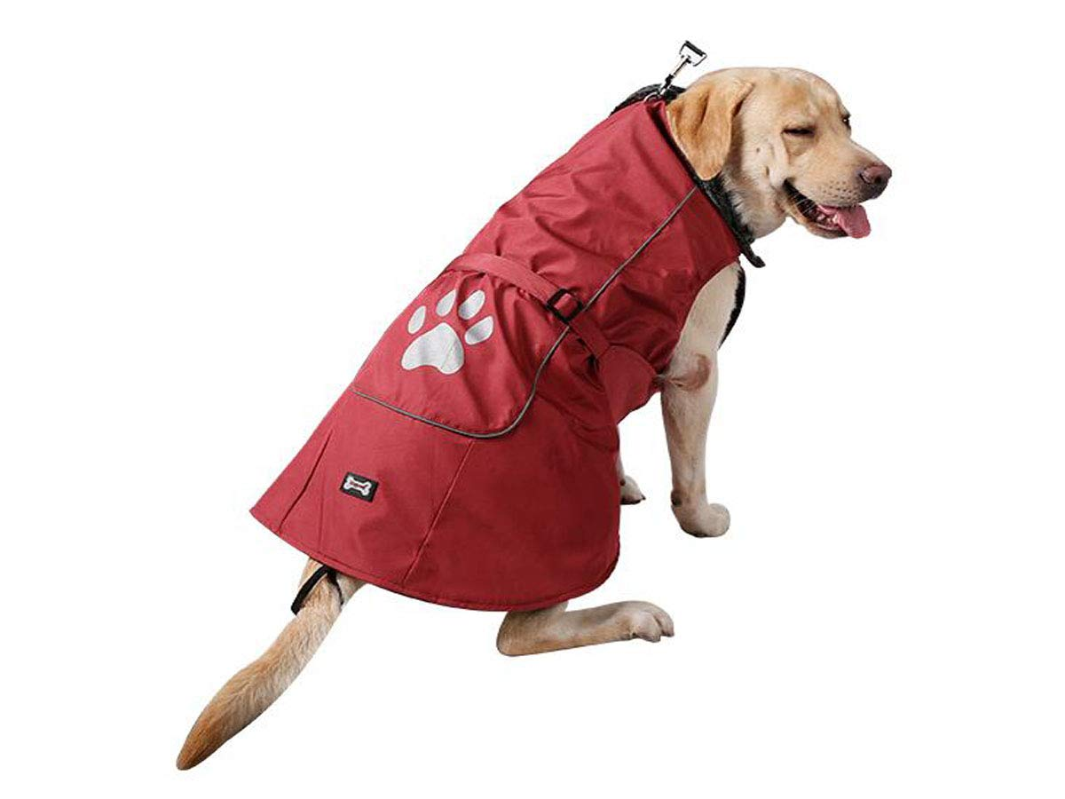 Red XXL red XXL Qiaoxianpo01 Dog Raincoat, Large Dog Pet Winter Waterproof Vest elegant (color   Red, Size   XXL)