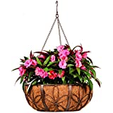 Deer Park Ironworks BA226 Hanging Daisy Basket with Coco Liner, 18-Inch