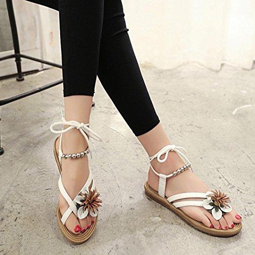 spina sandali sandalo a di a fiore punta Yistu Donna punta pesce bianca piatta fasciatura spiaggia 1wHaaU