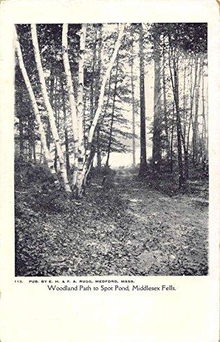 - Middlesex Fells Massachusetts Spot Pond Woodland Path Antique Postcard K95185