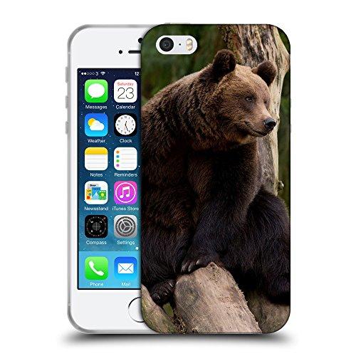 Just Phone Cases Coque de Protection TPU Silicone Case pour // V00004094 Ours est assis sur un arbre // Apple iPhone 5 5S 5G SE