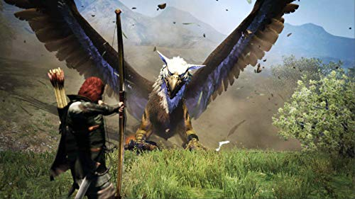 Dragon's Dogma: Dark Arisen - Nintendo Switch 3