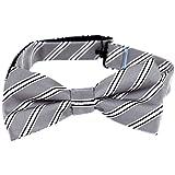 PBTZ-47 Mens Aficionado Pre-Tied Bow Tie Silver White Black