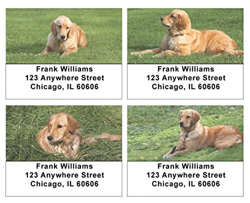 Goldens in The Grass Address Labels