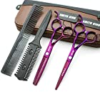 6.0 Inches Hair Cutting Scissors Set with Combs Lether Scissors Case,Hair cutting shears