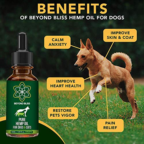 Beyond Bliss Hemp Oil for Dogs & Cats- 650 milligrams - Joint Pain - Separation Anxiety - Chronic Pain Relief - Organic & Natural - Anti-Inflammatory - Grown & Made in USA - Omega 3, 6, 9