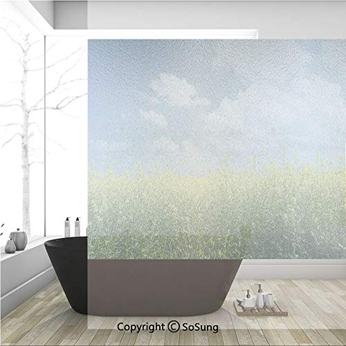 3D Decorative Privacy Window Films,Blooming Rapeseed Field and Clear Sky Clouds Saxony Germany Rustic Eco,No-Glue Self Static Cling Glass Film for Home Bedroom Bathroom Kitchen Office 36x36 Inch