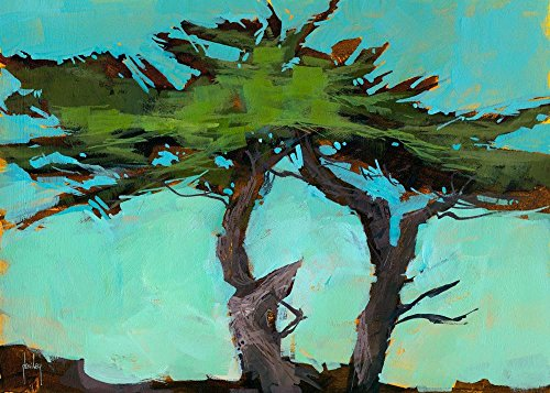 (Easy Art Prints Paul Bailey's 'Cypresses' Premium Canvas Art 20 X 28)
