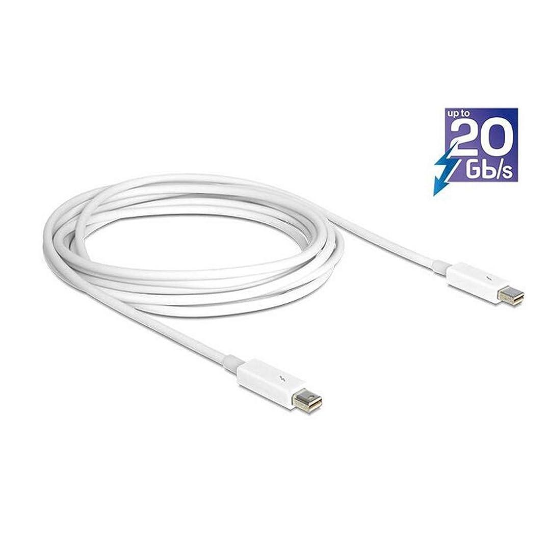 ブラウズ偽善洗剤usbc ハブ Type-Cハブ 6in1 usbc hdmi アダプター 4K@30hz HDMI出力/TF/SDカードリーダー/USB3.0/PD充電に対応 (6in1)