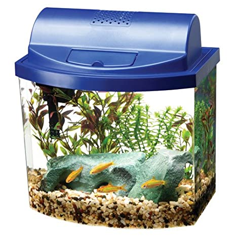 Amazon.com   Aqueon 17772 Mini Bow 2.5 Gallon Desktop Aquarium Kit ... 99dfe512df78