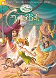 Disney Fairies Graphic Novel #5: Tinker Bell and the Pirate Adventure