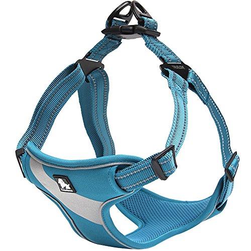 Creation Core 3M Reflective Front Range Dog Harness with Handle Durable Nylon Breathable Mesh Pet Vest, Royal Blue M